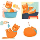 Cat life. Cute red cat adventures. Cute cartoon cat isolated on white background stock illustration