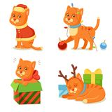 Cat life. Cute red cat adventures Stock Image
