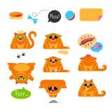 Cat Life Set rouge Photo stock