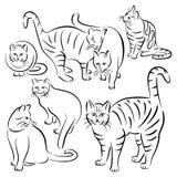 Cat Lines Designs Set Fotografie Stock