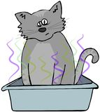Cat in a litter box Royalty Free Stock Photos