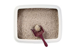 Cat litter box. With biodegradable pine wood chips, isolated on white royalty free stock photos