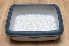 Cat litter box with clumping clay on wooden floor. Stock Images