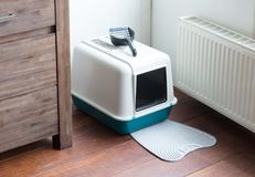 Cat litter box. In a dutch house royalty free stock images