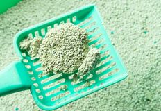 Cat litter box for toilet of cat with green scoop. Closeup Stock Photography
