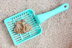 Cat Litter with cat sand scoop Stock Photos