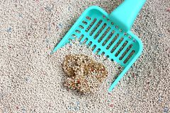 Cat Litter with cat sand scoop Royalty Free Stock Images