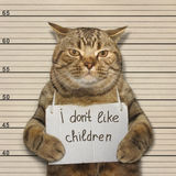 A cat and little children Stock Images