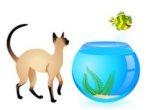 Cat with little  fish in aquarium Royalty Free Stock Images