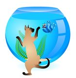 Cat with little  fish in aquarium Stock Photo