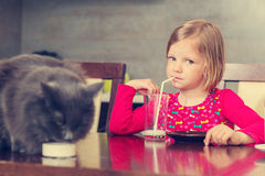 Cat and little girl drinking milk. Stock Photos