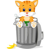 Cat looking out trash can. With a fish skeleton and stub Royalty Free Stock Photography