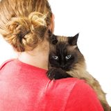 Woman Carrying Cat on Shoulder. Cat looking over the shoulder of a woman that is carrying it in her arms Stock Images