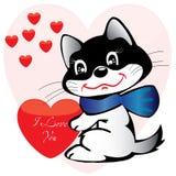 Cat_love Fotos de Stock