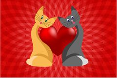 Cat love Royalty Free Stock Photography