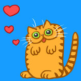 Cat in Love on Valentine`s Day Vector Illustration Stock Photography