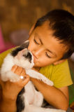 Cat lover Stock Images