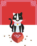 Cat loves food. A black & white cat is sitting in front of a heart shaped food bowl Royalty Free Stock Image