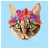 Cat low poly. Cat colorful low poly design  on blue background with a white outline. Animal portrait card design Stock Images