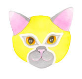 Cat luchador, watercolor illustration. Cat fighter. Luchador or fighter mask. Hand-drawn lucha libre animal in yellow wrestling mask - colorful helmet on the Stock Photo