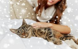 Cat lying in bed at home Royalty Free Stock Photography