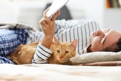 Cat Lying i säng med ägaren arkivbild