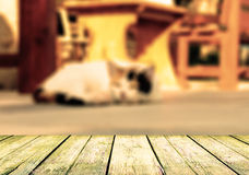 Free Cat Lying In The Street Near Cafe Table Royalty Free Stock Photos - 41574358