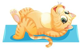 A cat lying on the towel. Illustration vector illustration