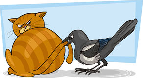 Cat and magpie. Illustration of sleepy cat and malicious magpie Stock Photos