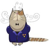 Cat man. Proud haughty cat in blue jacket with medal of honour Royalty Free Stock Photo