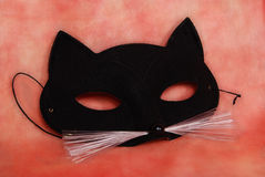 Cat mask. For costume party Royalty Free Stock Images