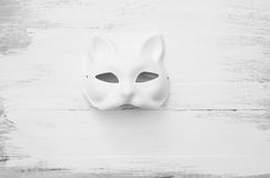 Cat Mask Royaltyfri Bild