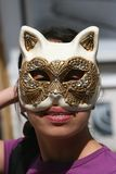Cat Mask. Hand Made Cat mask royalty free stock image