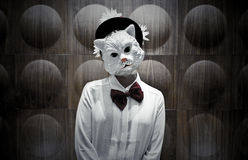 Cat Mask Portrait Royaltyfria Bilder