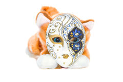 Cat in the mask. Yellow cat soft toy wearing a mask, lying on a white Stock Image