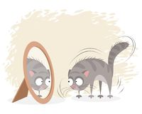 Cat and mirror Royalty Free Stock Photos
