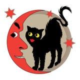 Cat and moon Stock Photos