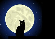 Cat. Moon. Royalty Free Stock Images