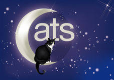 Cat on moon Royalty Free Stock Photos