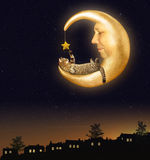 The cat and the moon Stock Images