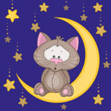 Cat on the moon Stock Photos