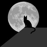 Cat in the moonlight. Black silhouette Stock Images