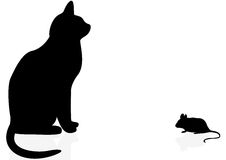 Cat and mouse. Illustration of a cat and a mouse on a white background stock illustration