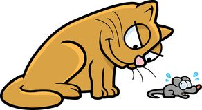 Cat and Mouse. An orange cat chasing a gray mouse Royalty Free Stock Images
