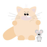 Cat and Mouse Angry Stock Photo