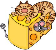 Cat and mouse with cheese Stock Photos