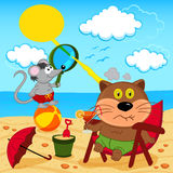 Cat and mouse fool around with on beach Royalty Free Stock Image