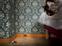Cat and mouse in a luxury old-fashioned room. Cat looks at the mouse Stock Images