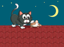 A cat and a mouse at the rooftop Royalty Free Stock Images