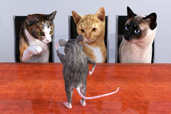 Cat Mouse Sales Marketing Meeting imágenes de archivo libres de regalías